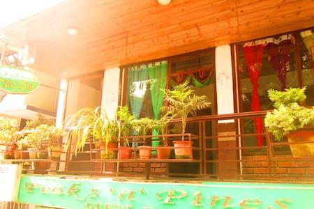 Super Deluxe Room in Town - East Sikkim