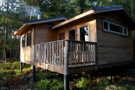 Off Grid Living at Jessie's Path - Cabin