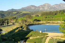 Picture of Welgevonden Estate Stellenbosch