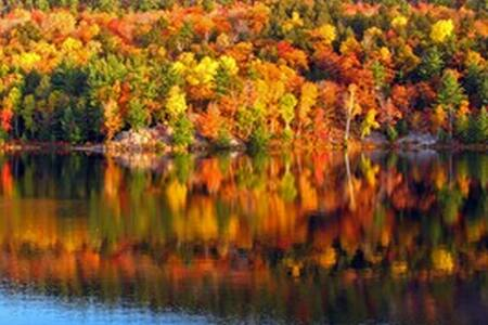5-stars! ENJOY NH'S WORLD FAMOUS FALL FOLIAGE - Casa
