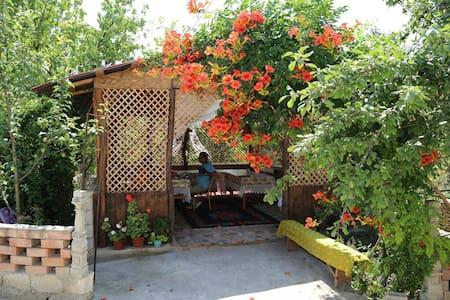 3 rooms in heart of Old Orhei - Trebujeni
