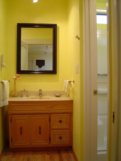There is a separate vanity next to the large shower