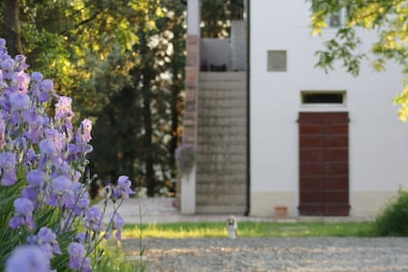 B & B The Aristocats - Ghizzano-Peccioli - Bed & Breakfast