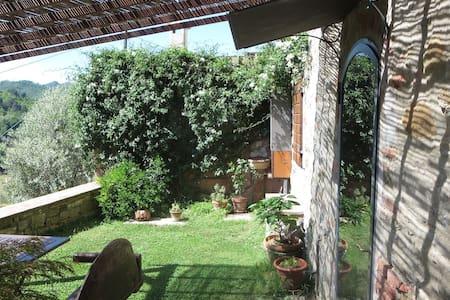 Montaio apt.in the Chianti hills - Cavriglia - Apartment