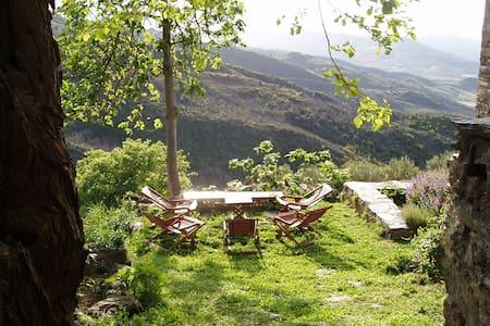 """Maison d'hôtes M Gaucher """"Nebbiu"""" - Vallecalle - Bed & Breakfast"""