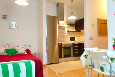 Calm studioflat in the historical center - Malaga - Appartement
