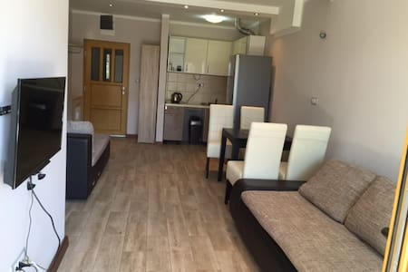 Comfortable 1 bedroom apartments - Apartment