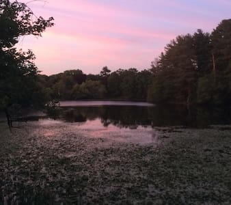 Peaceful Oasis by the Pond - Walpole