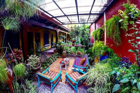 The Alice and Guillermo house. - Antiga Guatemala
