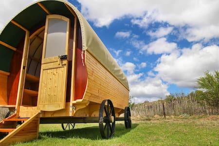 Glen Eden Ranch - Protea Pod - Lainnya