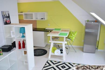 Cozy studio close to Herastrau Park - București - Loft
