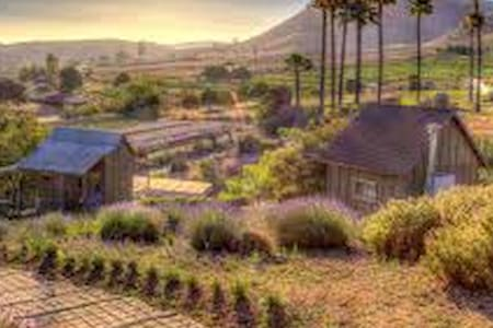 Provincial Cottage on Gorgeous Lavender Farm - Valley Center