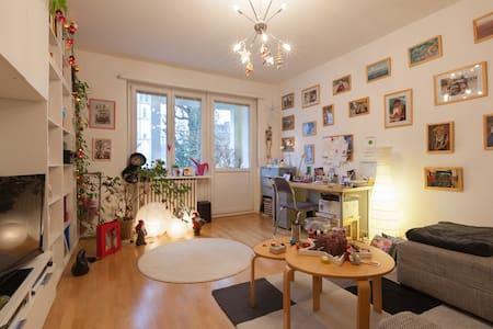 Helle, zentrale 2- Zimmerwohnung mit Balkon - Wiesbaden - Apartment