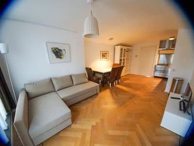 Beautiful apartment in Historical centre of Leiden - Apartmen