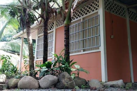Bambú Beach Hostel - Bed & Breakfast