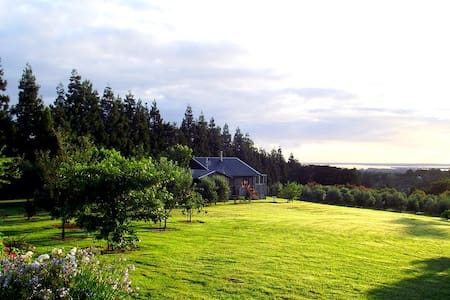 Havenlee Cottage - Katikati - Guesthouse