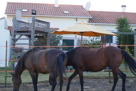 casa de campo - Nazaré