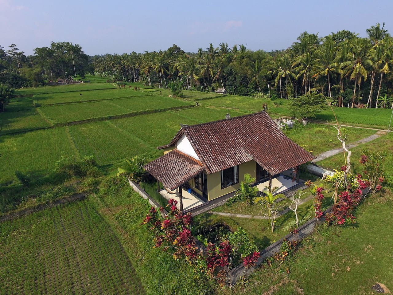 COZY AND CLEAN HOUSE in Rice fields