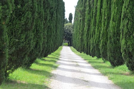 B&B Tivoli Casale Colleoni (Suite Villa Adriana) - Bed & Breakfast