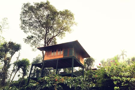 Tree House - Wayanad - 树屋