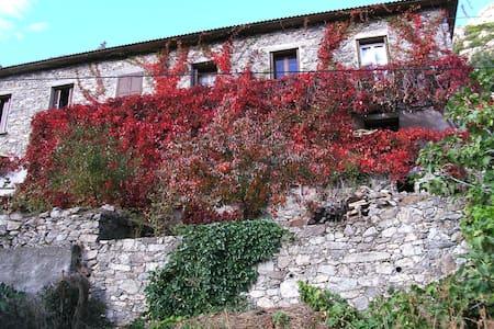 maison du village - Castirla