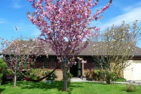 Sunny bungalow, close to the sea - Bude - House