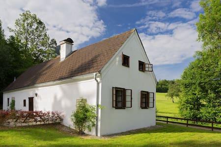 Romantisches Haus mitten im Grünen! - Steinakirchen am Forst - Maison