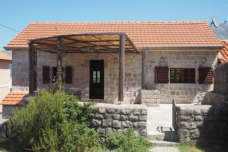 Traditional stone Villa with pool - Ljesevici - Casa