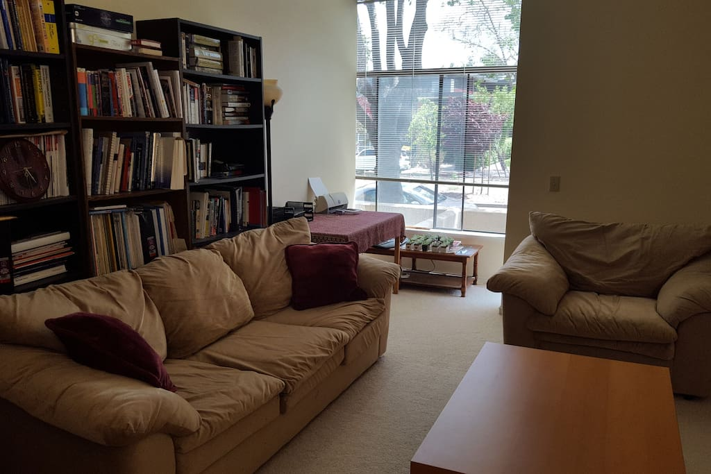 Comfortable couches in downstairs living room