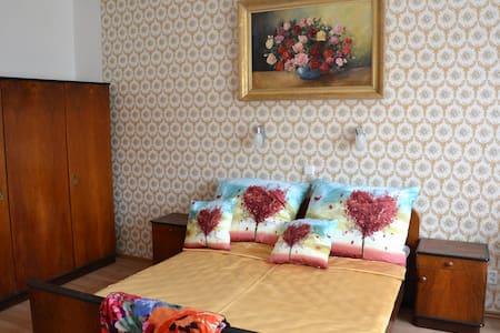 Ubytování v Praze v dostupnosti metra B - Praga - Bed & Breakfast
