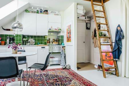 Attic studio apartment - Loft