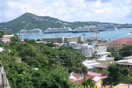 AUNT ANNA'S FANCY ( DON'T WASTE MONEY ON TAXIS) - Charlotte Amalie - Appartamento