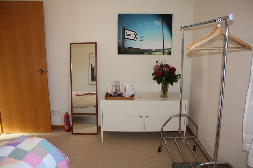 Hanging rail, cupboard and full length mirror.