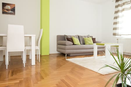Great located apartment, in the city center.  It's 3min walk from Zmaj Jovina street. Apartment is freshly renovated with care and love, so guests can enjoy their stay.   There is lot of great restaurants and cafe bars in less than 5min walk.