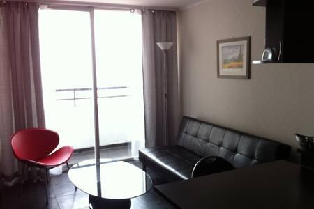 Cozy apartment - Santiago - Apartment