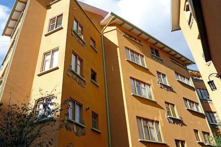 Comfortable 1-bedroom apartment - Sopocachi - - Apartemen