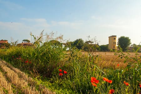 Il Silos Guest House Fregene Maccarese - Maccarese - Bed & Breakfast