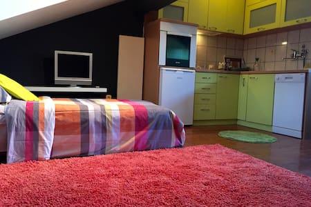 Felicia Apartment - Loft