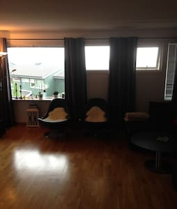 Big flat. 10 min to centrum. 10 min to airport - Apartamento