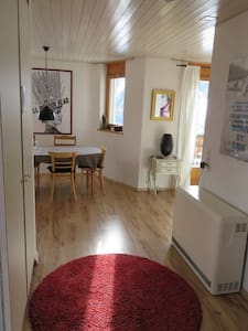 Perfect house for 2 families/groups - Lumnezia - House