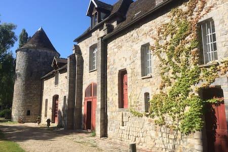 Charmant chateau en Bourgogne - La Chapelle-sur-Oreuse - Schloss