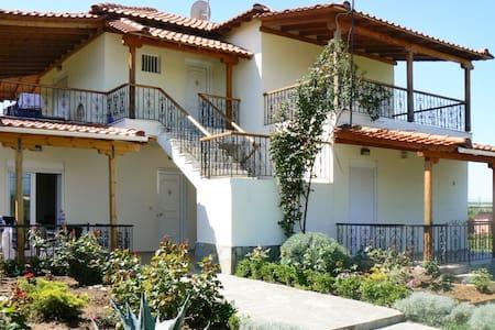 Sunny apartment with mountain views - Nea Plagia - Apartament