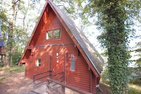 Devon:  swedish wooden lodge in the treetops - Casa en un árbol