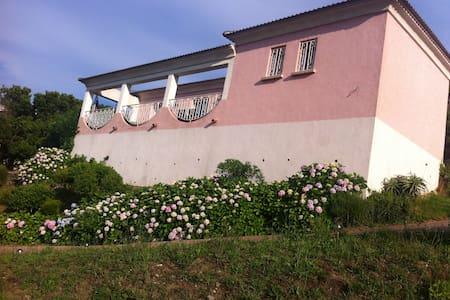 villa sur parc arbore - Sisco - Appartement