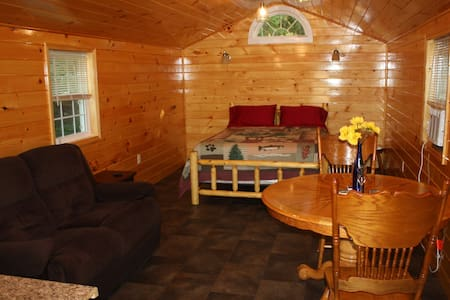 Keuka Lake Outlet Cabin - Zomerhuis/Cottage