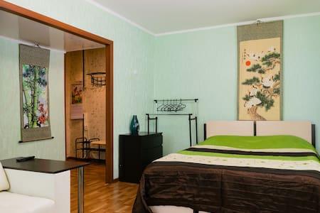 Уютные апартаменты с wi-fi - Lejlighed