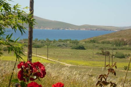 SECOND APARTMENT - Limnos