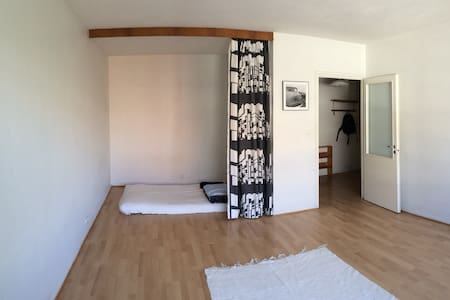 Spartan accommodation in the center of Tampere - Tampere - Apartment