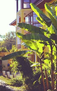 Гостевой Дом3 на Лесной у моря - Пицунда - Bed & Breakfast