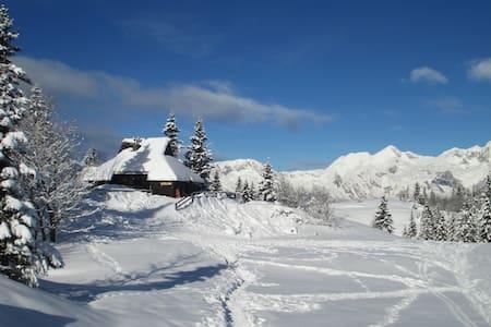 Chalet Tisa Velika Planina - Hus